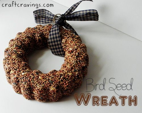 Make a Feast for Your Feathered Friends. Bird Seed Wreath tutorial. - Craft Cravings #outdoors #winter #fall #birds