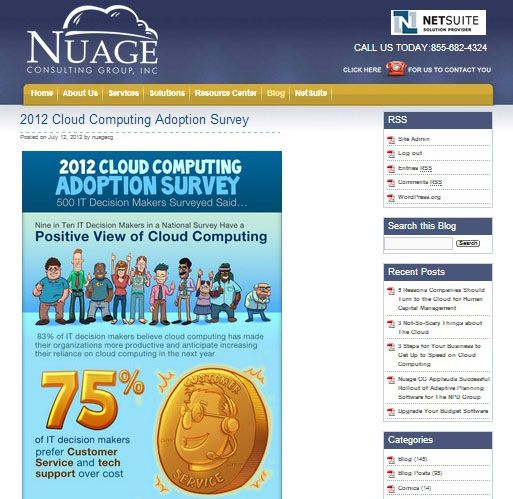 Nuage Consulting Group Inc Is The World Leader In Netsuite Consulting Washington Dc Cloud Computing Virginia Saa Erp System Cloud Computing Business Software