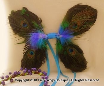 Natural Peacock Wings