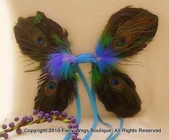Natural Peacock Wings