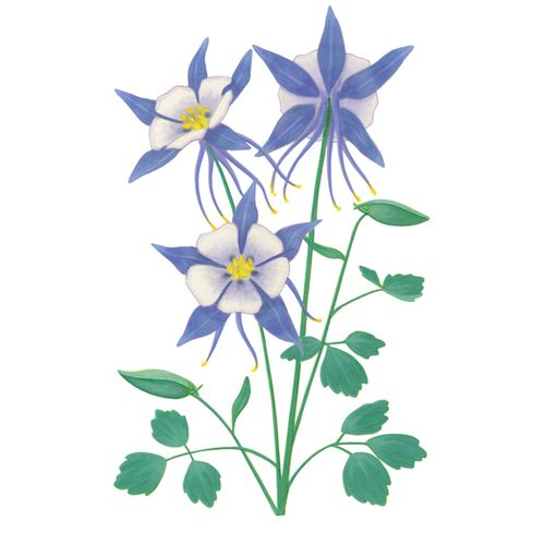 Related Image Flower Wall Decals Flower Mural Art Deco Flowers