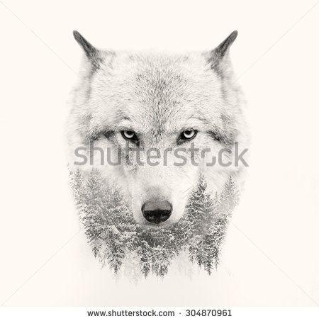 Wolf Trees Nature Wildlife Design Picture Double Exposure