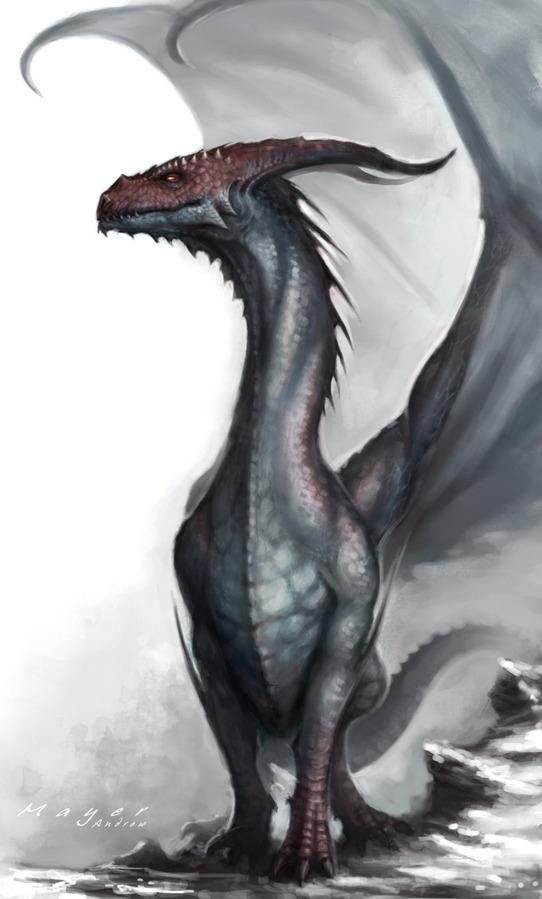 western dragons western dragons pinterest dragon dragon art rh pinterest com