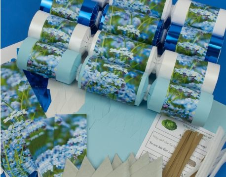 8 frozen forget me not make fill your own party crackers kit 8 frozen forget me not make fill your own party crackers kit the solutioingenieria Choice Image