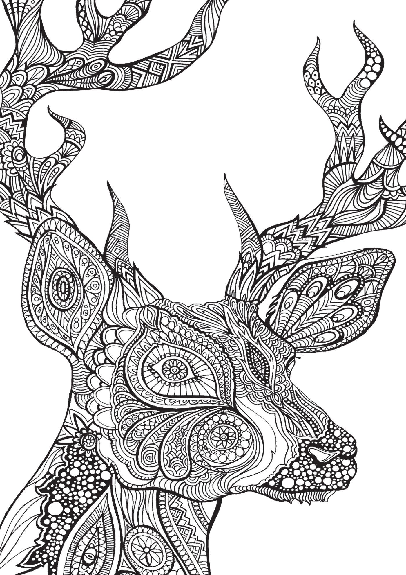 Bestiaire extraordinaire : 100 coloriages anti-stress: Amazon.de ...