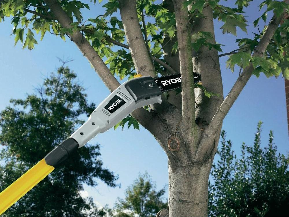 How to pick the perfect pole saw and safety tips