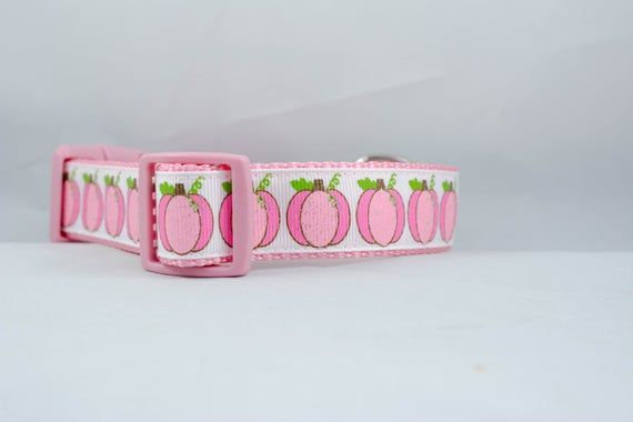 Pink Pumpkins Dog Collar, 1 inch wide, buckle or martingale, thanksgiving, Halloween, fall, holiday, festive, glitter, girly