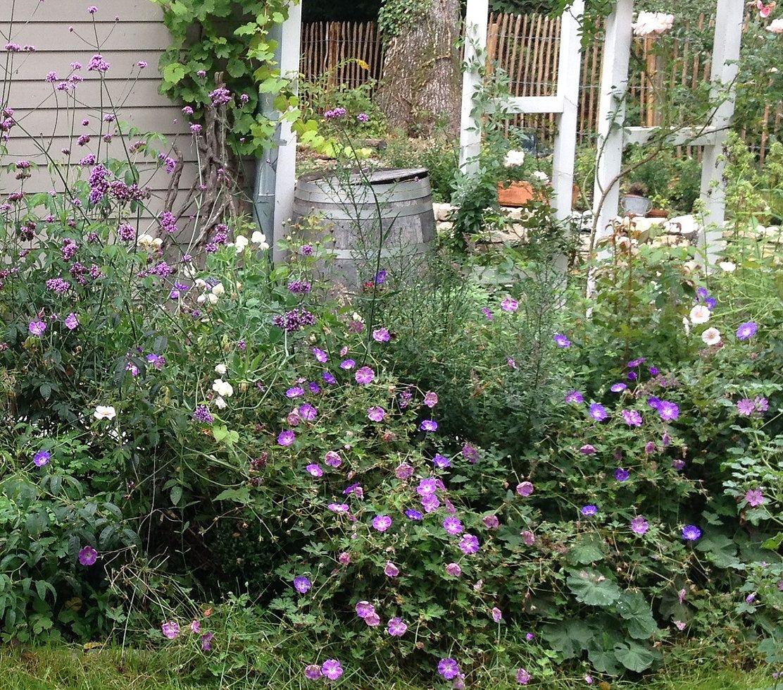 14 Blumen, die den Garten verzaubern ohne Arbeit zu machen Garten Cottage garten, Garten und  ~ 01095814_Garten Gestalten Ohne Viel Arbeit