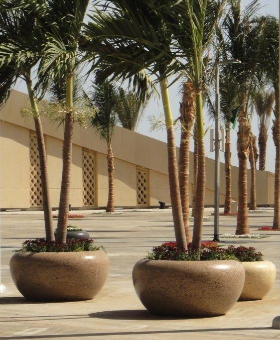 Photo of KING ABDULLAH SPORT CITY #piantere in #Jeddah #Bellitalia strada molto elegante fu …