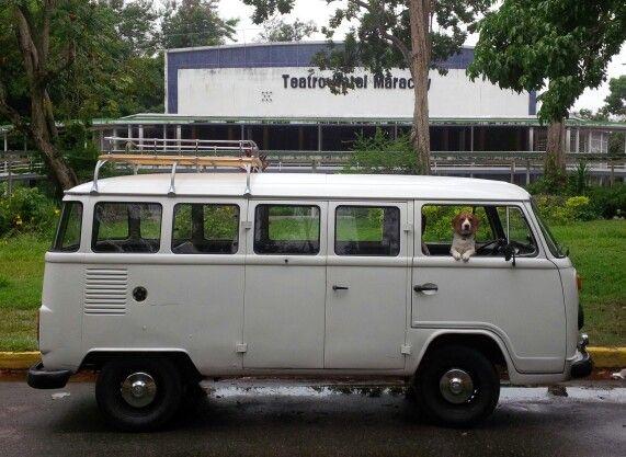 14 window Bus