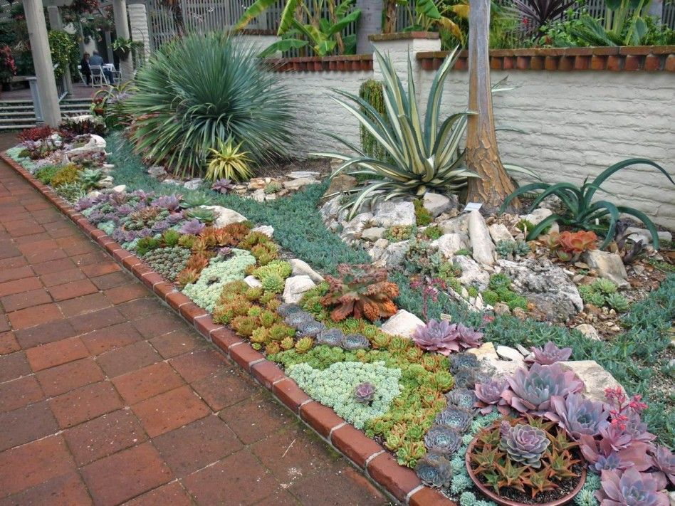 Garden Astounding Succulents Garden Design Ideas With Brown