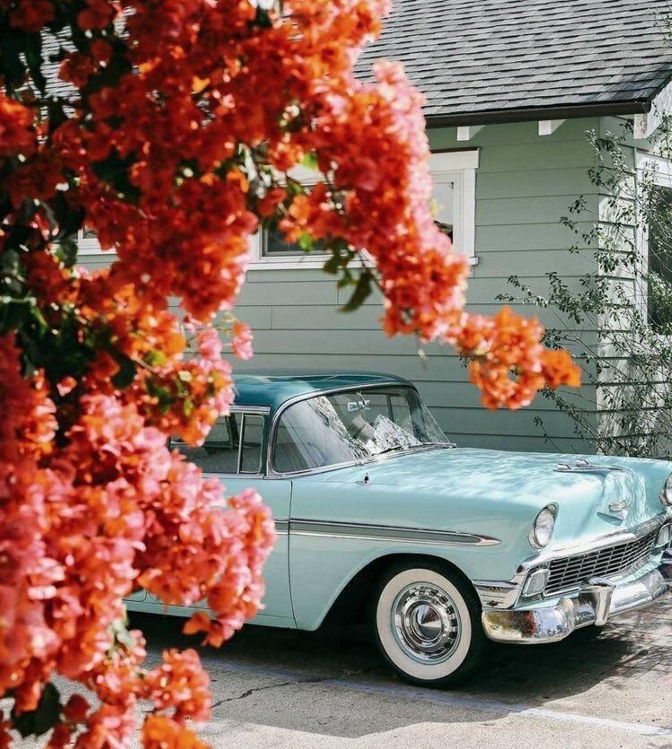 Vintage Cars Flowers Wallpaper 50s Aesthetic Aesthetic