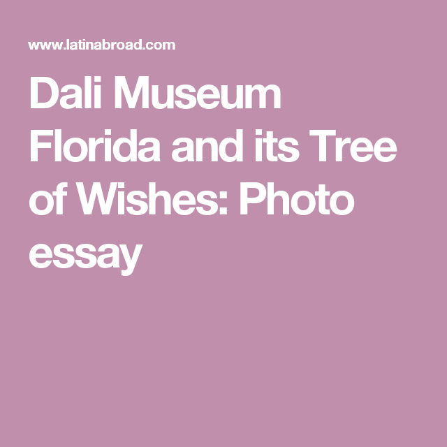 dali museum florida and its tree of wishes photo essay florida dali museum florida and its tree of wishes photo essay