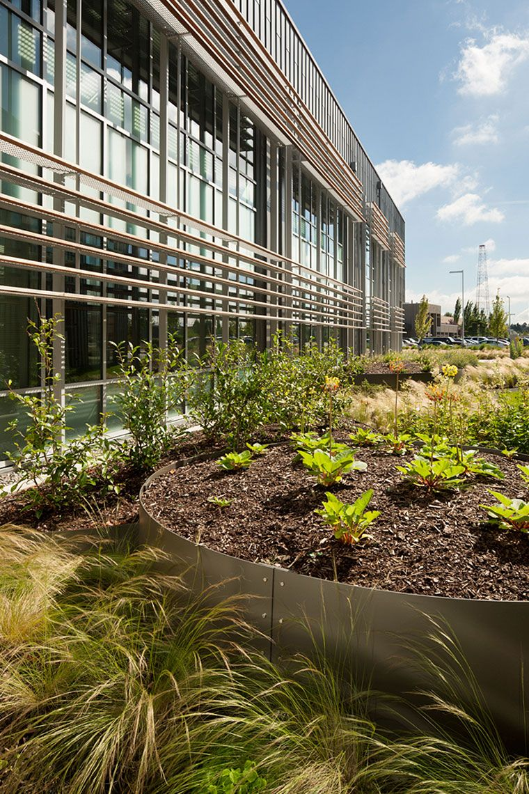 Clover Park Technical College Allied Health Building | Landscape ...