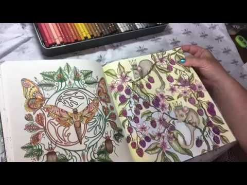 Flip Thru Adult Coloring Book Reviews On Youtube Videos