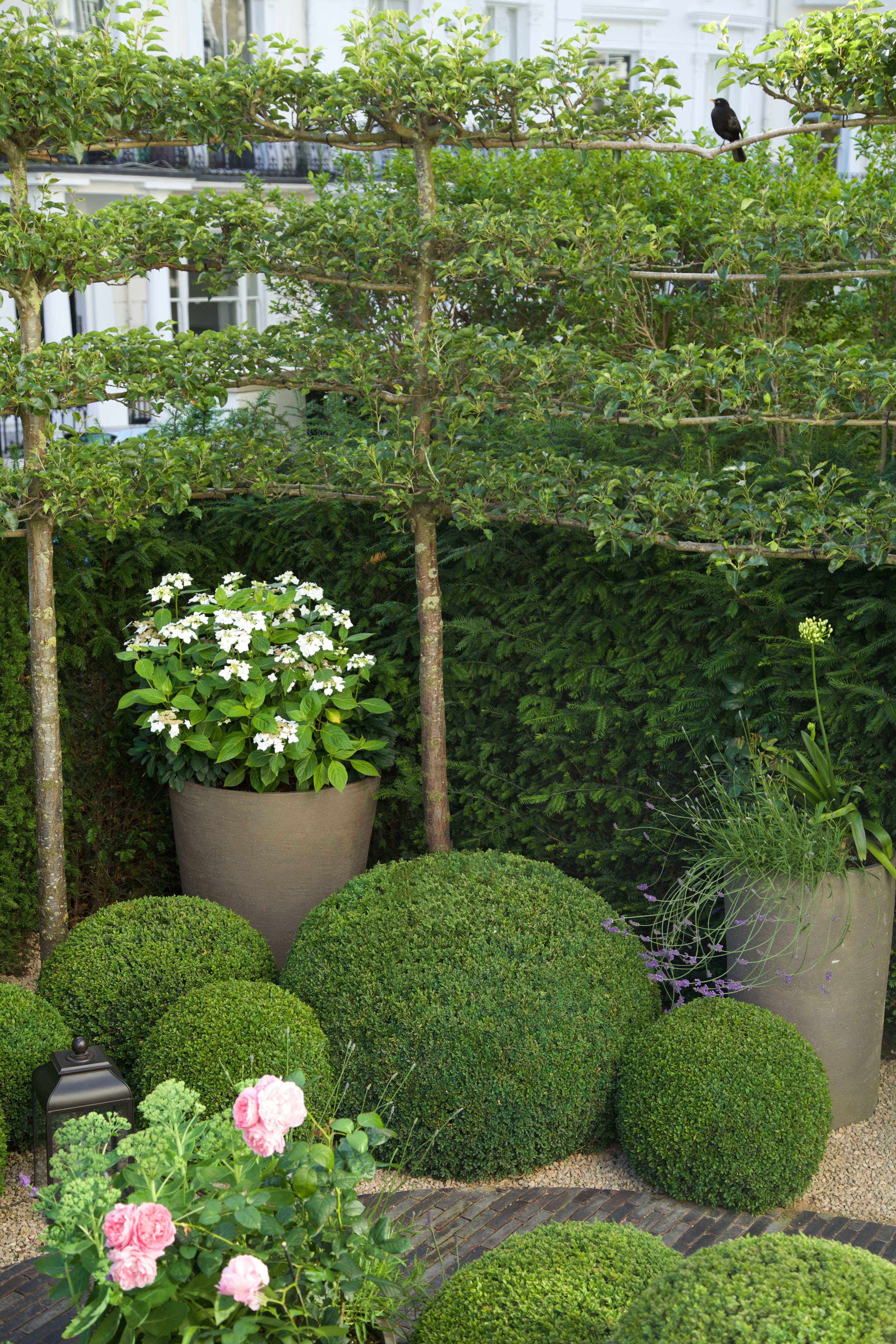 Espaliered Pear Trees Box Balls And Atelier Vierkant Pots Flemish Brick Paths And Charles Edwards Lanterns Sloped Garden Landscaping On A Hill Garden Design