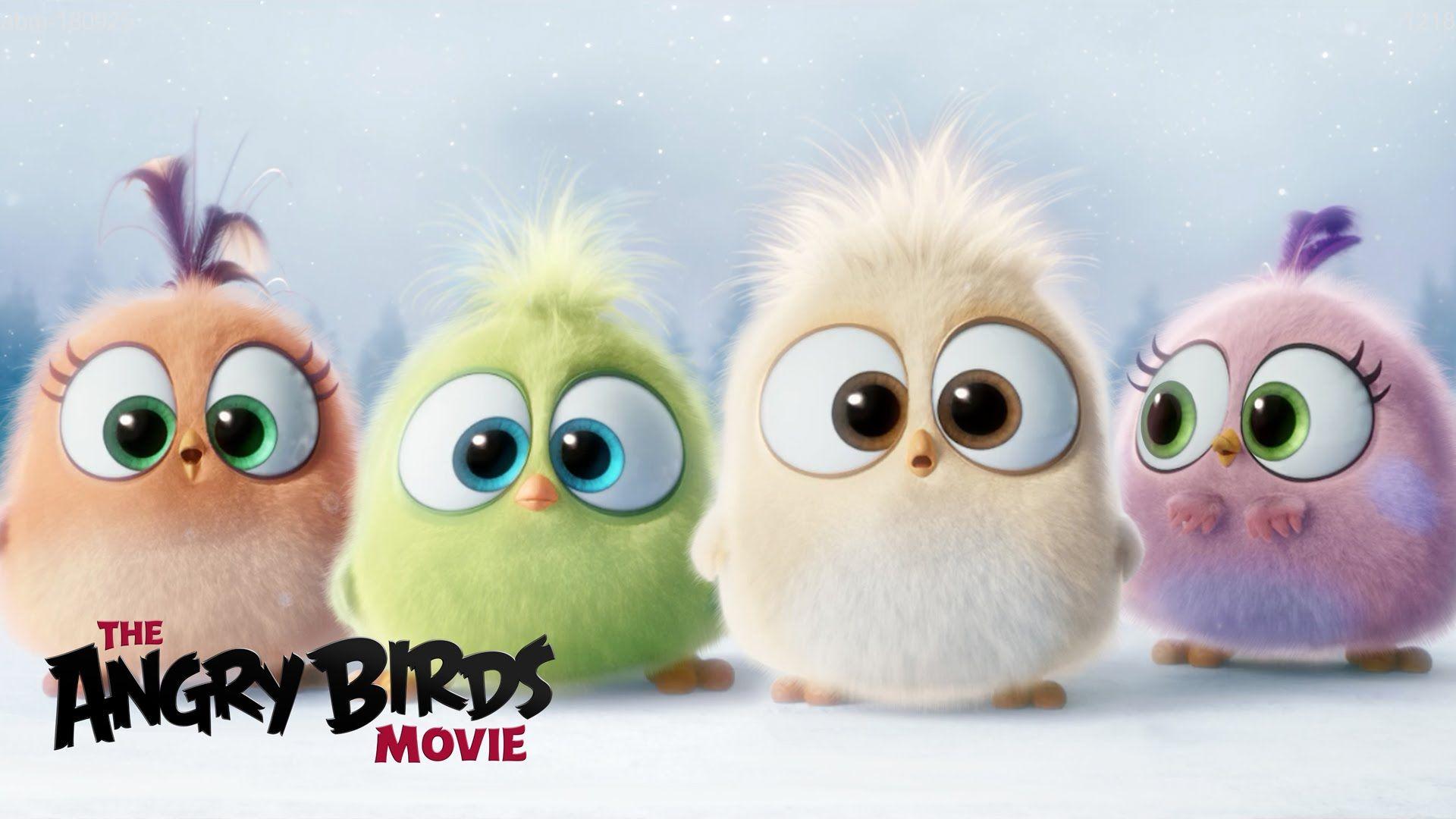The Angry Birds Movie Season S Greetings From The Hatchlings Angry Birds Movie Angry Birds Cute Cartoon Drawings