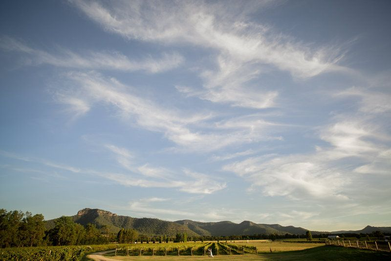 Stomp vineyards in the Hunter Valley // Hilary Cam Photography