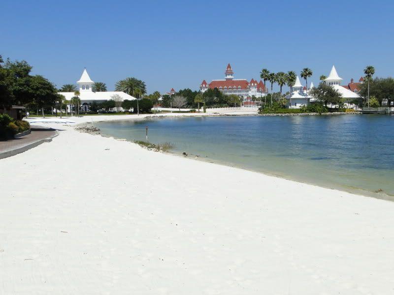 Weddings At Luau Beach Disney S Polynesian Resort Google Search Wedding