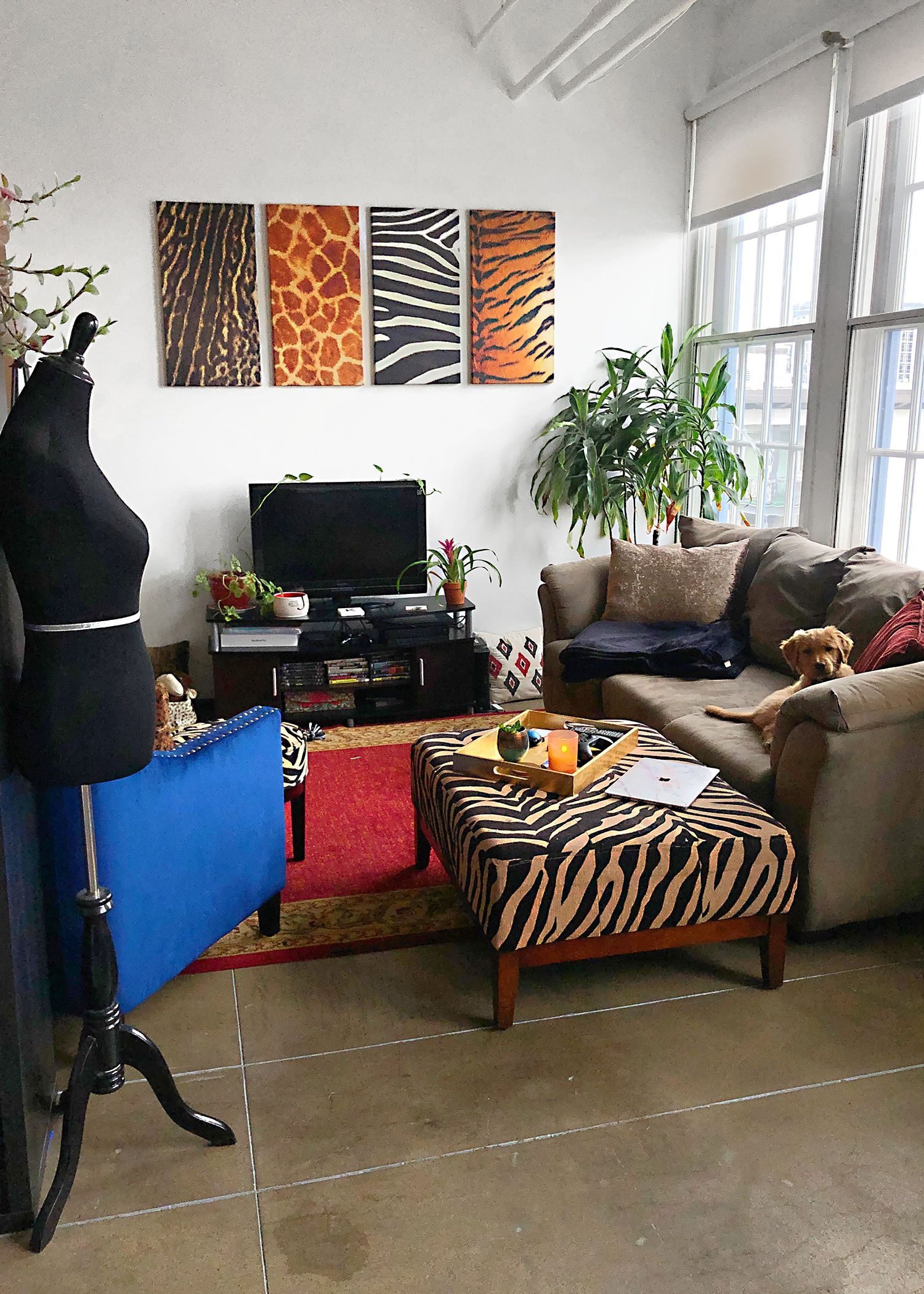 My Apartment Decor Tour Katey Blaire In 2020 Apartment Decor Inspiration Apartment Decor Apartment Interior Design