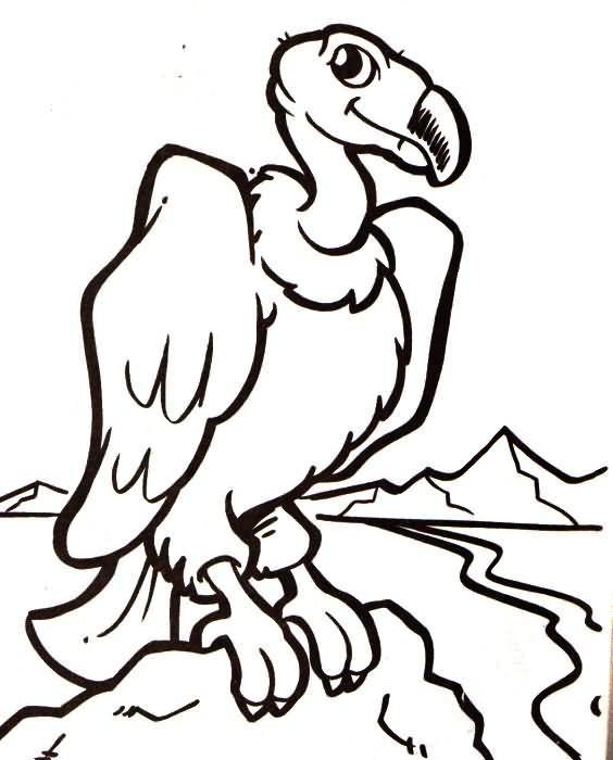 Resultado de imagen para condor de colombia para colorear | school ...