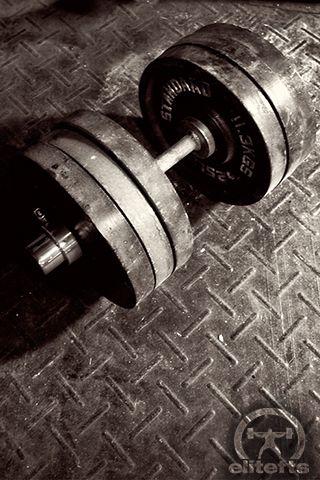 Weights Wallpaper : weights, wallpaper, Mobile, Wallpapers, Elite, Wallpaper,, Dumbell,, Fitness, Wallpaper