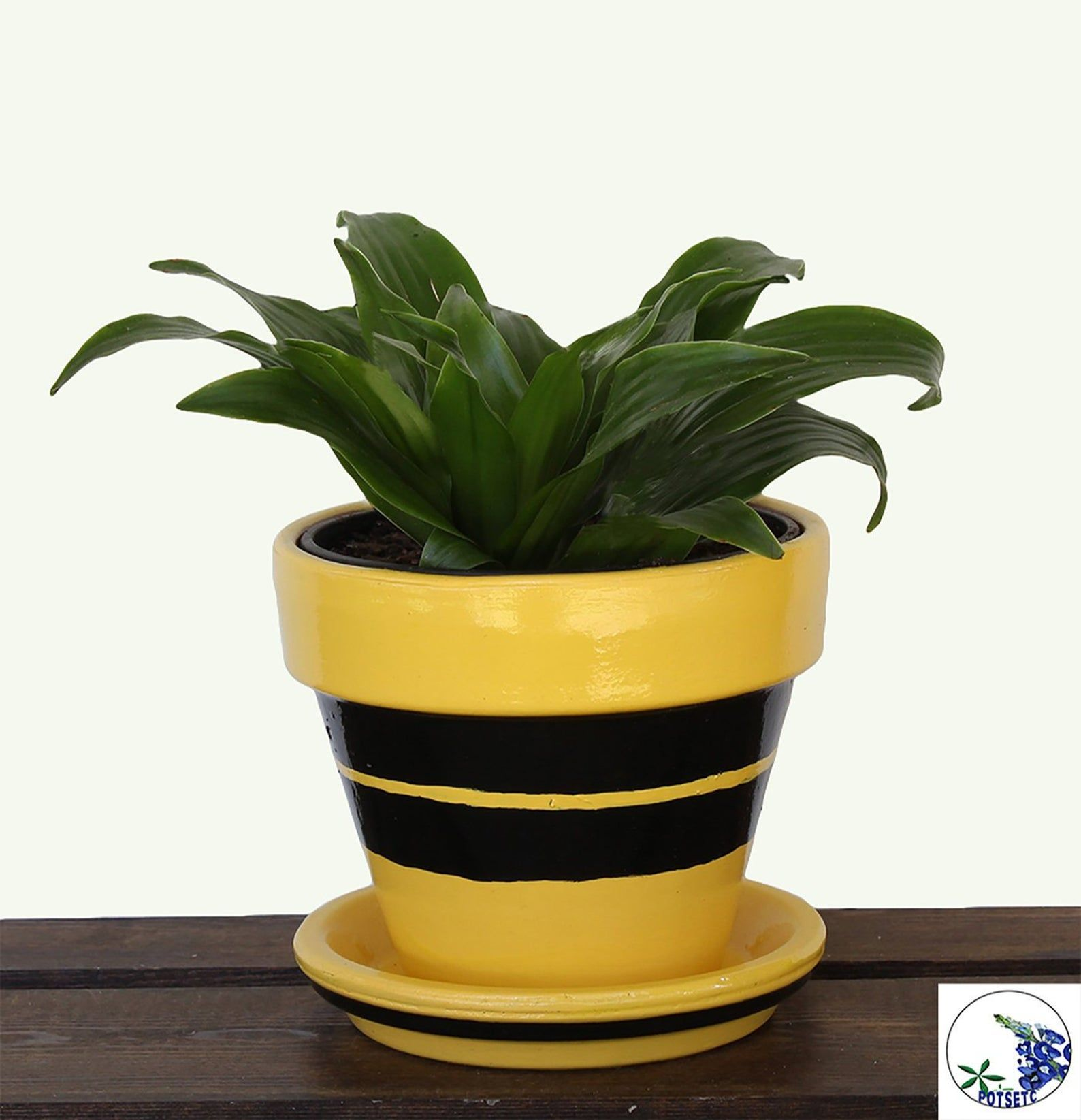 Yellow And Black Modern 4 Inch Planter Plant Pot Flower Etsy Patio Planters Small Flower Pots Flower Pots
