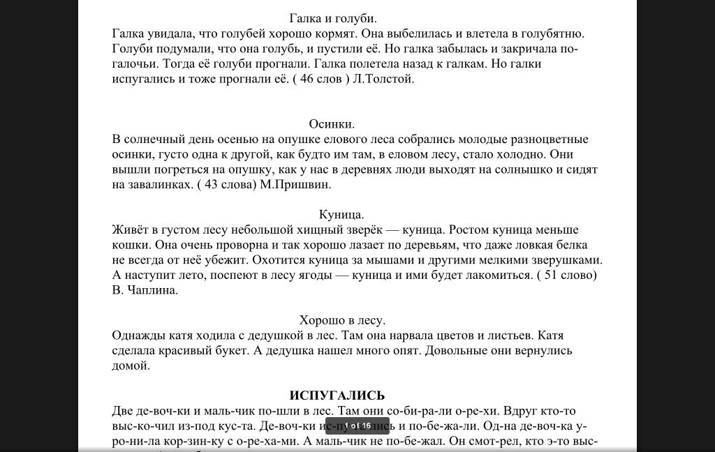 Контрольное списывание Диктанты Чтение работа с текстом  Контрольное списывание Диктанты Чтение