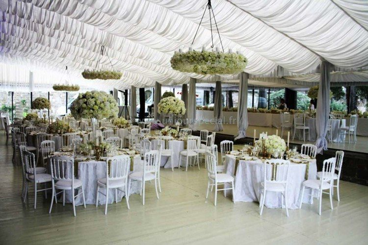 Explore Platinum Wedding Planners And More