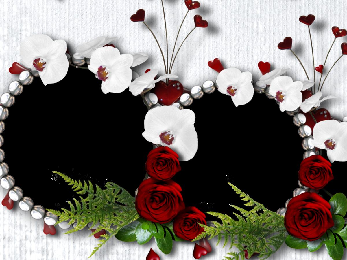 marco foto san valentin 023 | Lugares que visitar | Pinterest