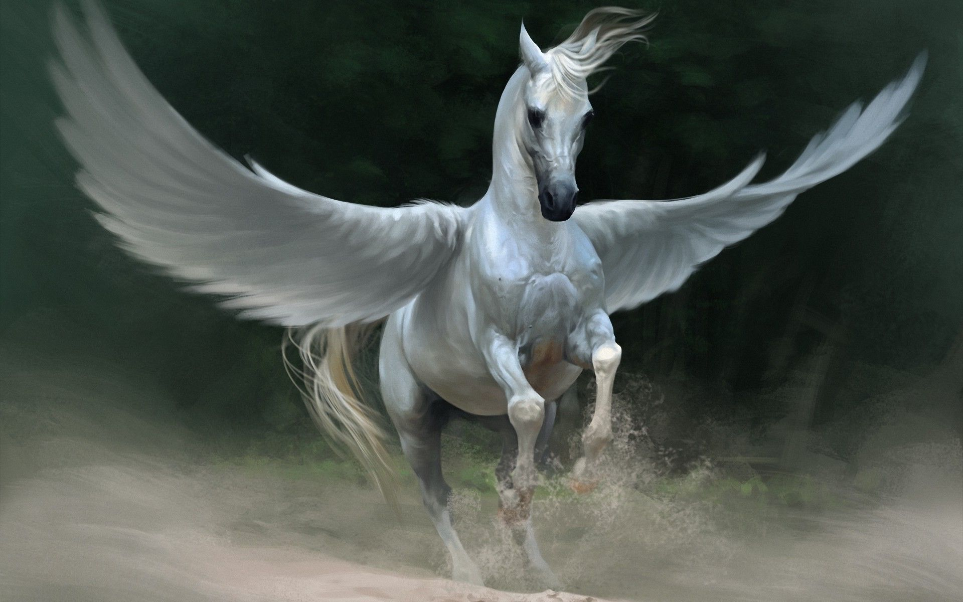 Amazing Wallpaper Horse Magic - b812754e9ea2c04fd89dbcce4c3107d6  Pictures_228511.jpg