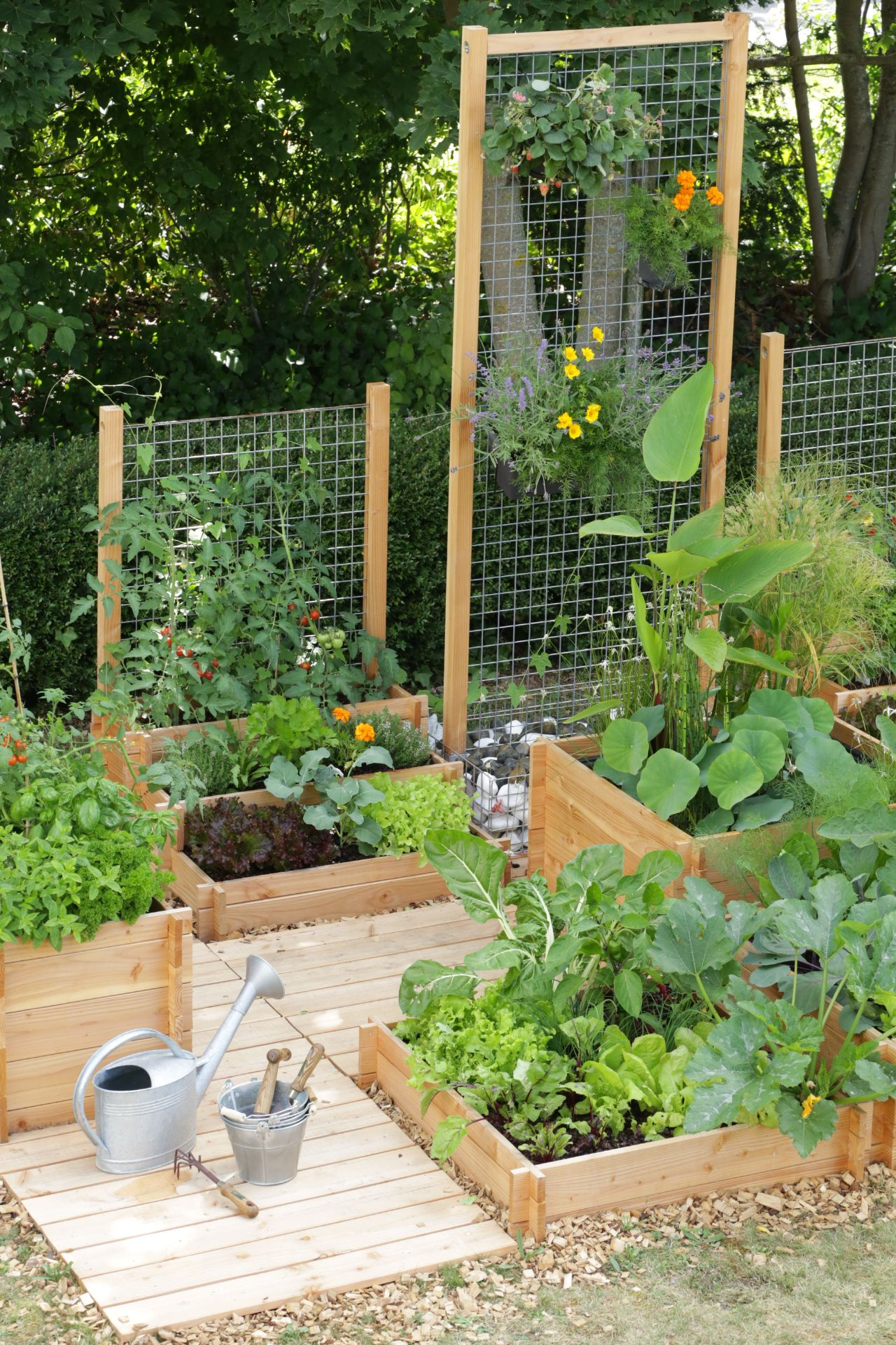 10 Ways to Style Your Very Own Vegetable Garden Gardens