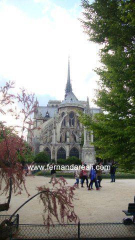 Catedral de Notre Dame. Ile de la Cité