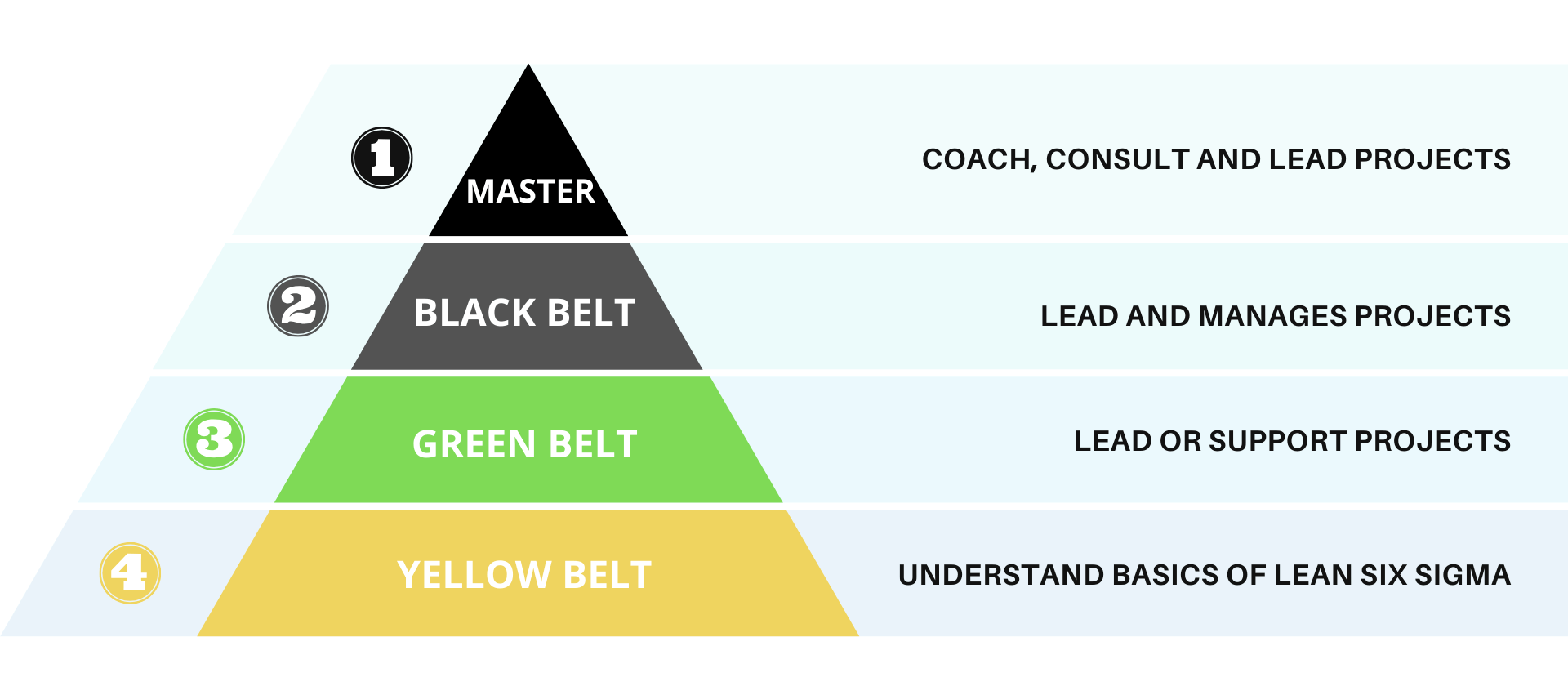 Six Sigma Belts Which Lean Six Sigma Belt Should I Take Lean Six Sigma Six Sigma Tools Sigma