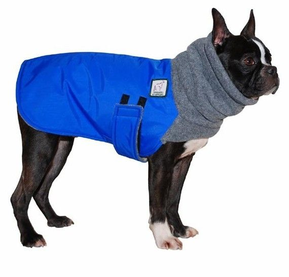 Boston Terrier Winter Dog Coat Fleece Dog Snood Fleece Hood Dog