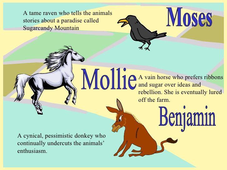 Animal Farm Characters Google Search Animal Farm Quotes Animal Farm Summary Farm Animals