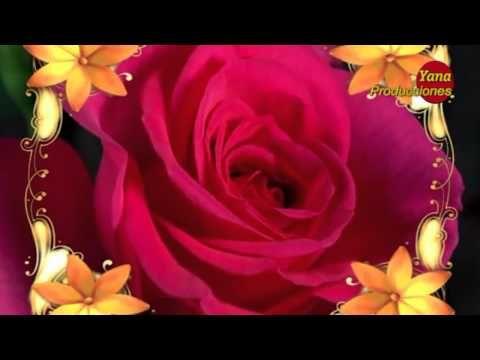 Las Mañanitas Alejandro Fernandez Youtube Glitter Flowers Birthday Quotes Happy Birthday