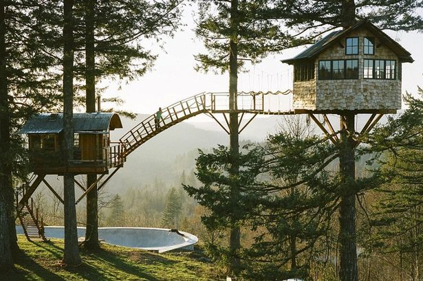 The Incredible Tree House That Foster Huntington Calls Home Kids News Article