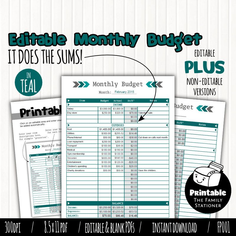 Printable Monthly Budget Planner Editable PDF, Budget Spreadsheet - home budget spreadsheet