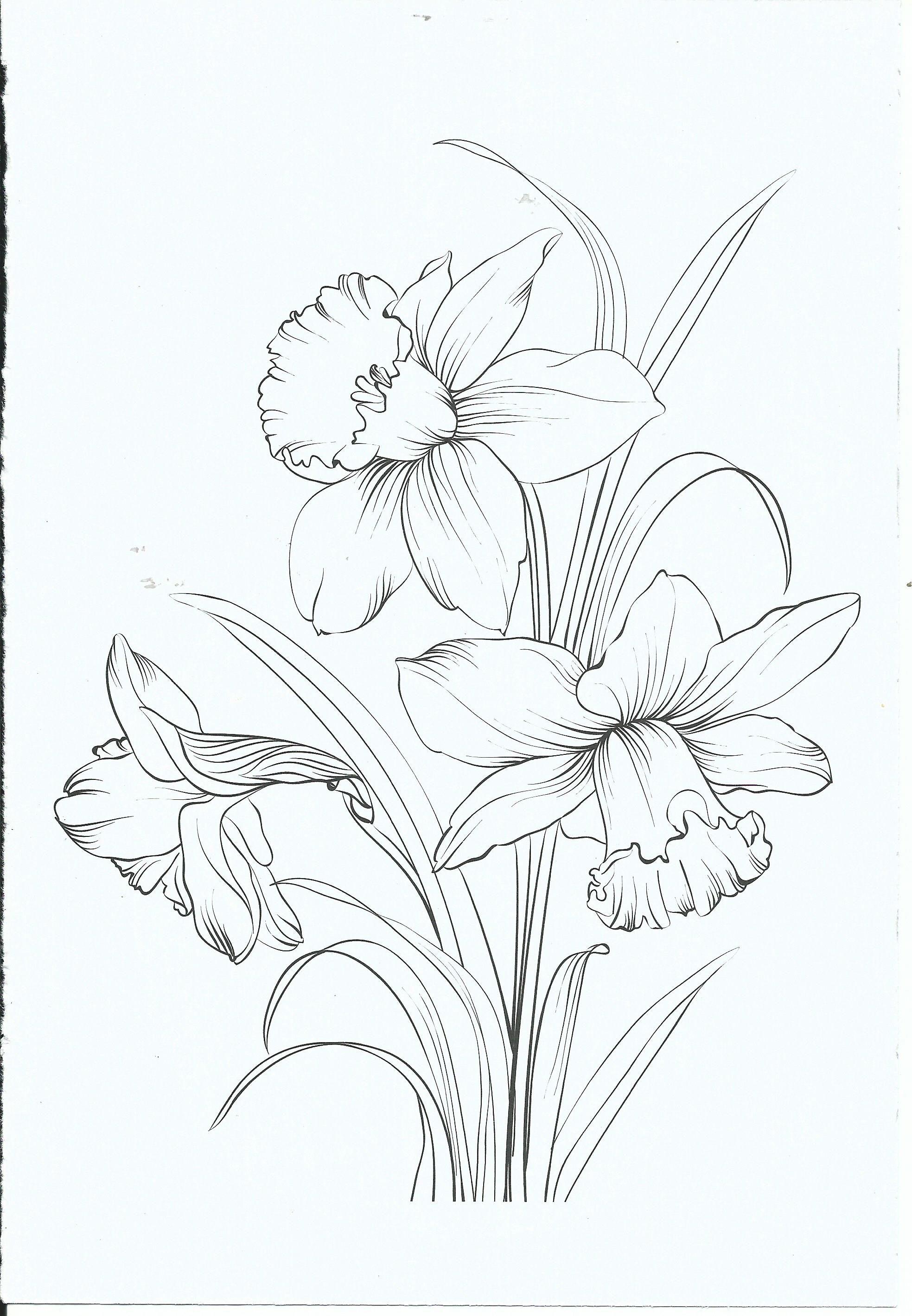 Kleurplaat stencils pinterest drawings daffodils and flowers
