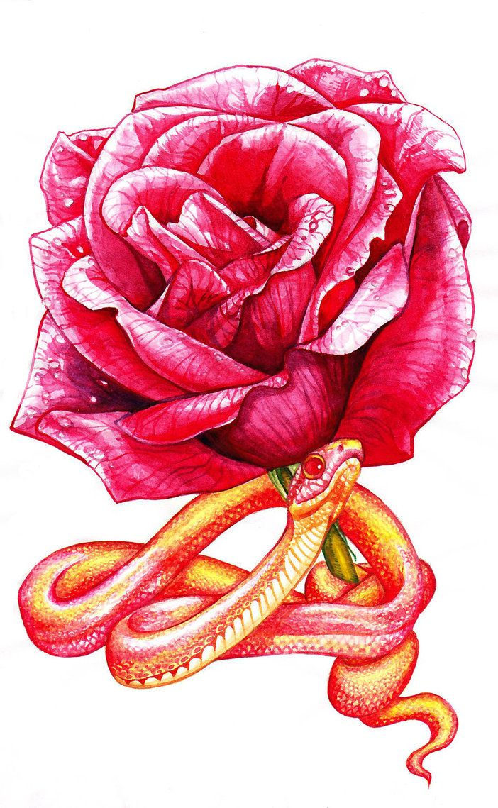 Look like the innocent flower but be the serpent undert this shakespeare uses the serpent as a symbol of the macbeths treachery and deception throughout the play look like the innocent flower but be the serpent buycottarizona