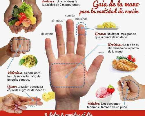 La Dieta De La Mano Es Un Tipo De Dieta Especial Que Muestra Que Tanta Cantidad De Un Alimento Específico Necesitas Comer Los Expertos Señalan Que Pinteres