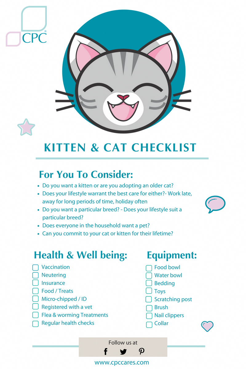Funny Demanding For Cat Food Kitten Checklist Cat Checklist Pregnant Cat