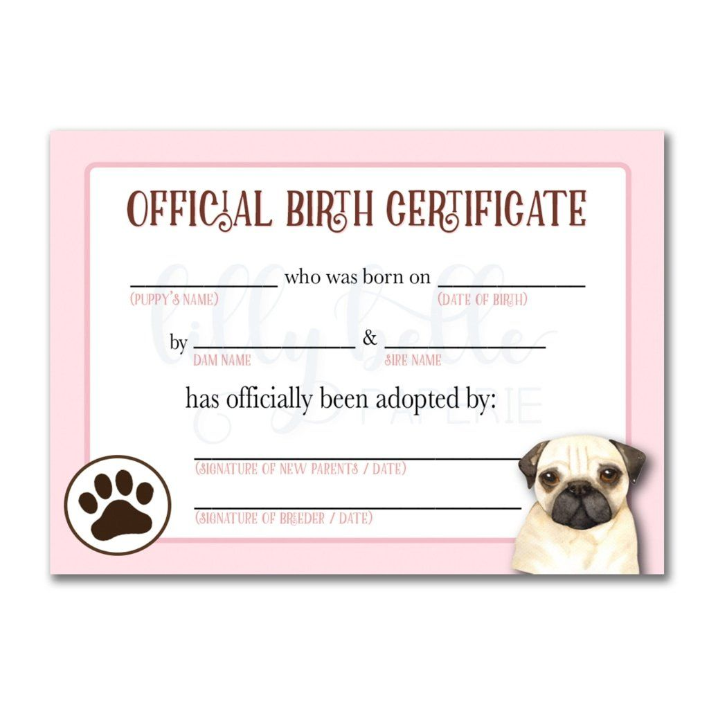 Pink Pug Birth Certificate Birth Certificate Adoption