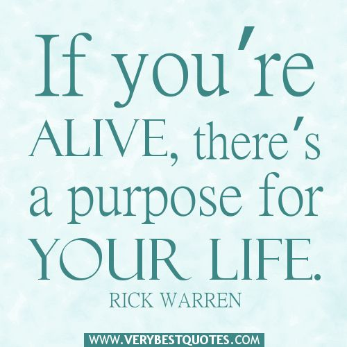 Life Purpose Quotes Custom You're Alive There's A Purpose For Your Life  Positive Quotes