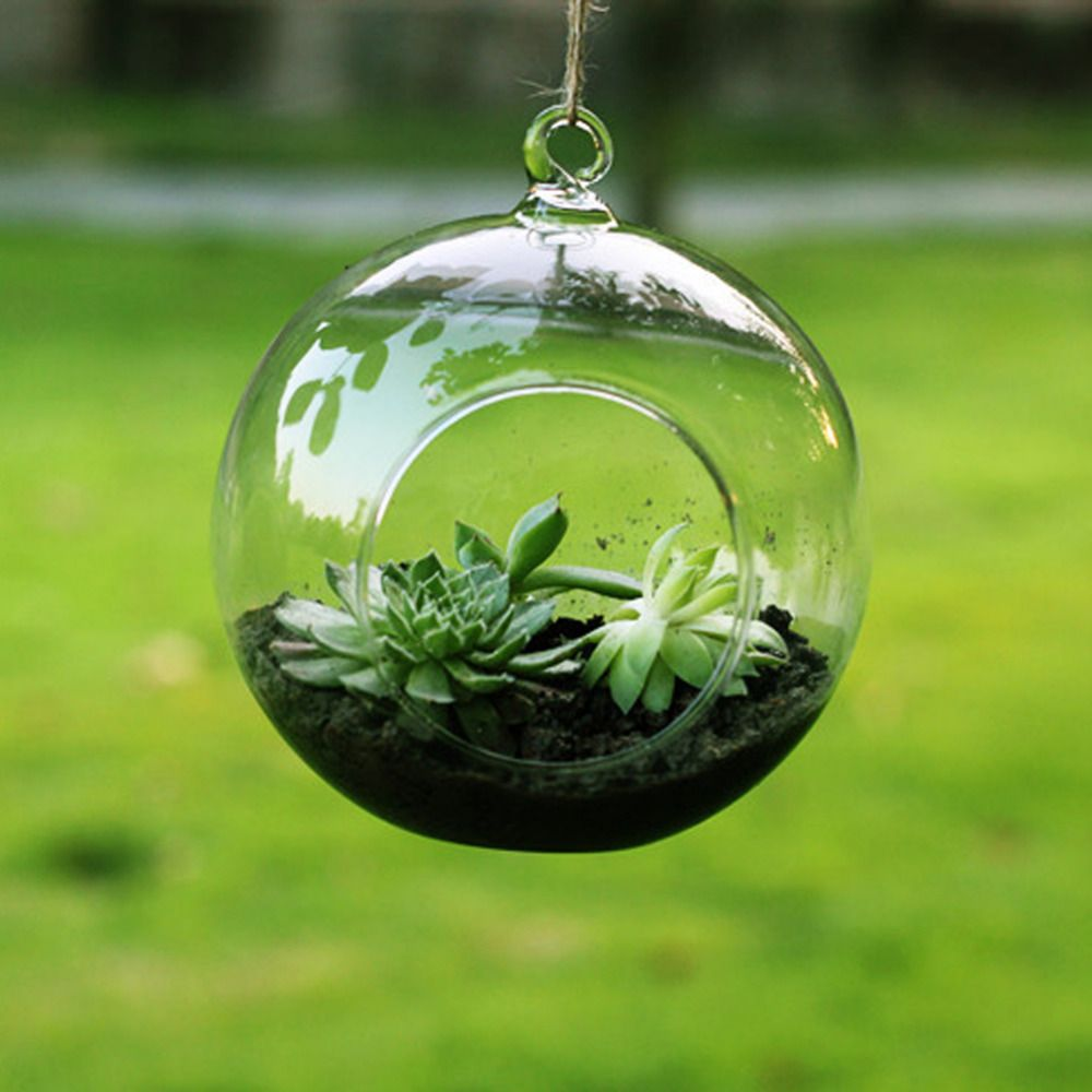 High Quality Clear Glass Round Terrarium Flower Plant Stand Hanging ...