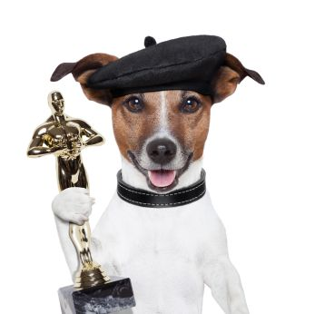 Critter Critics Puppies And Kitties Give Their Post Oscar Reaction Celebrity Dogs Famous Dogs Dog Names
