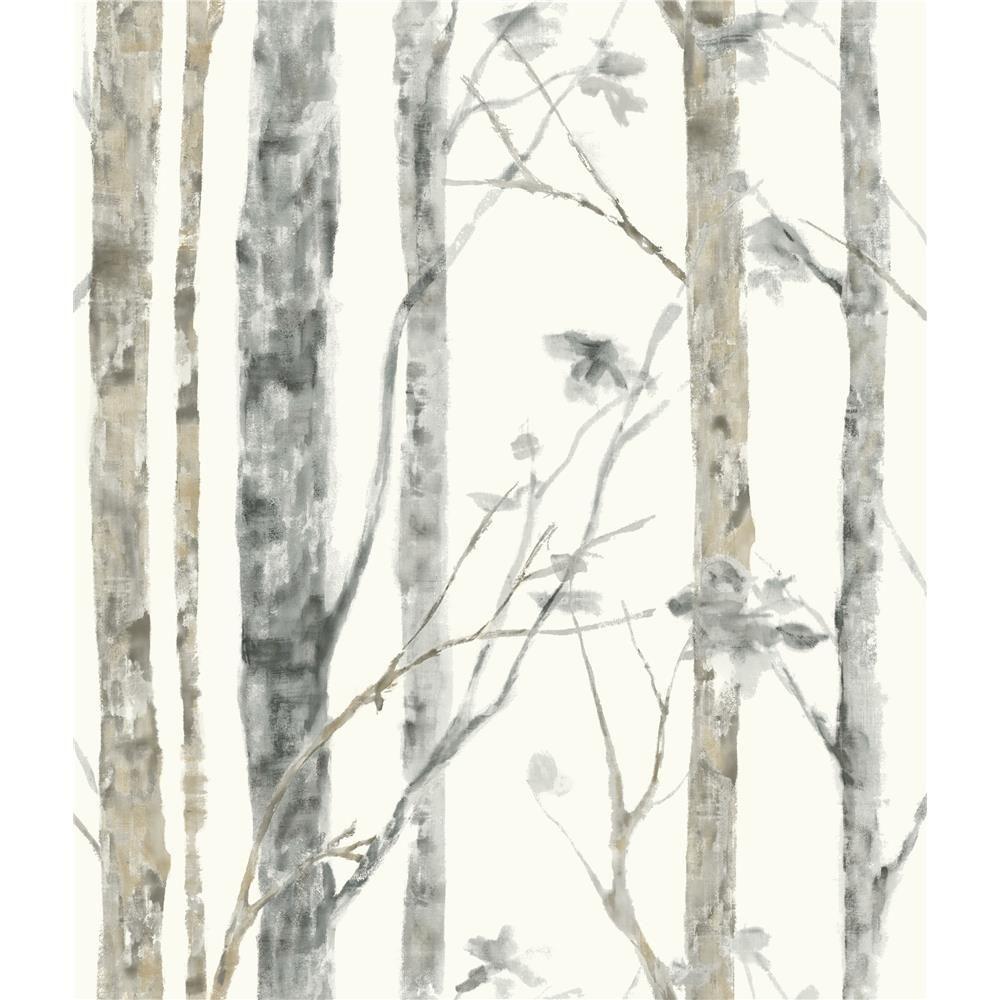 Rmk9047wp Roommates Roommates By York Rmk9047wp Birch Trees Peel And Stick Wall Decor Birch Tree Wallpaper Tree Wallpaper Birch Tree