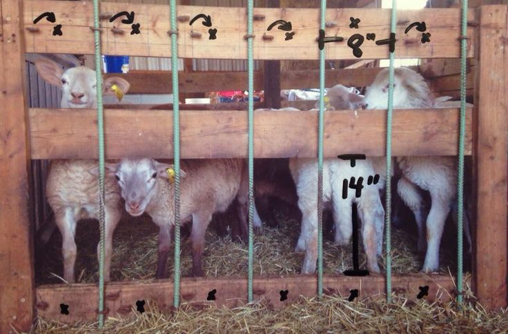 Sheep Creep Feeder WoodWorking Projects & Plans Sheep