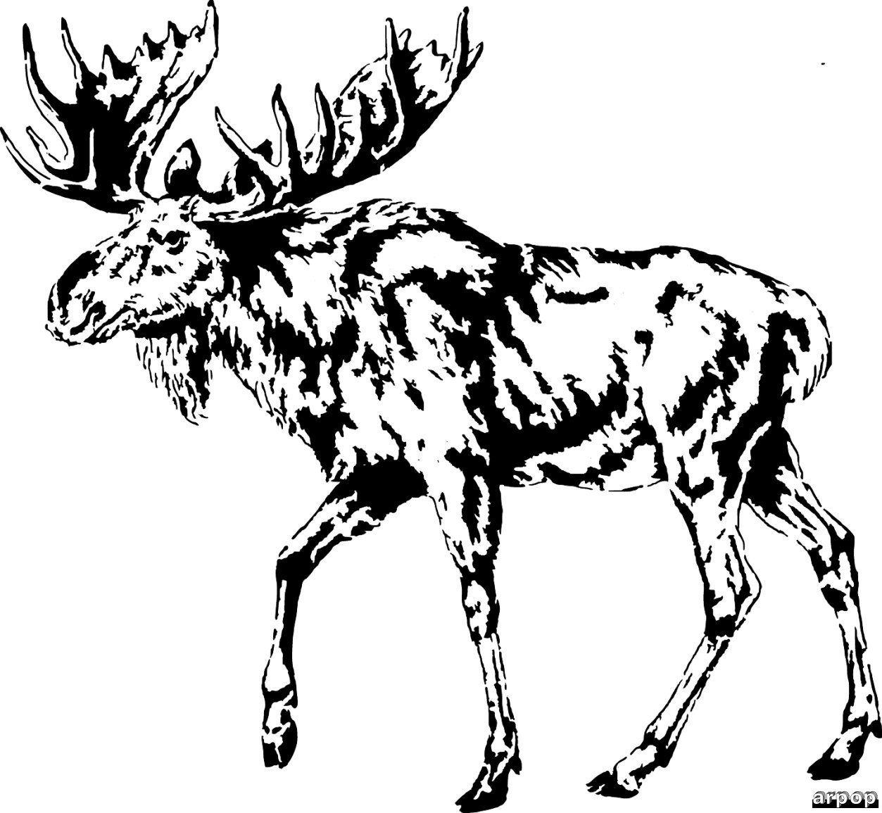 Free scroll saw patterns by arpop moose scroll saw